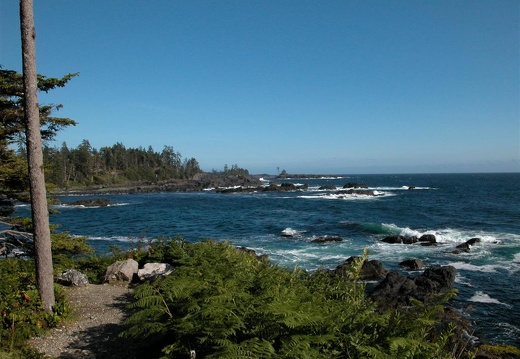 The ocean side of Ucluelet during a summer blow