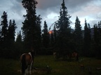 Sun setting at Cody cabin