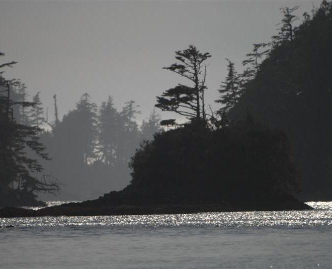 Sib Visits To Vancouver Island