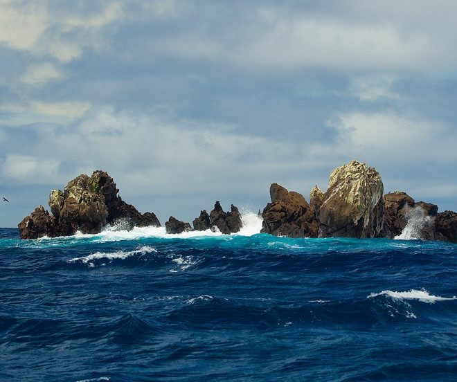 On the Way to the Galapagos