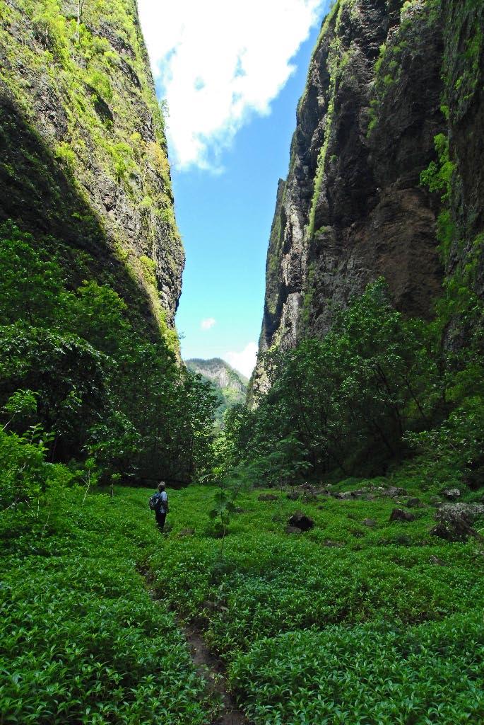 A Tour of Nuku Hiva